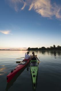 Mit dem Kanu die Natur erkunden: Die weiten Flachwasserzonen lassen sich ruhig und auf eine naturverträgliche Weise vom Kanu aus erkunden. Auch Vogelexkursionen mit dem Kanu werden am westlichen Bodensee angeboten / Bildnachweis: REGIO Konstanz-Bodensee-Hegau e.V., Fotostudio Kasper