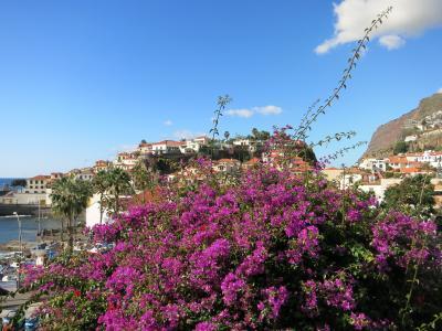 Aktivurlaub auf Madeira mit singlereisen.de