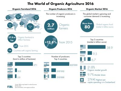 A booming organic sector: more farmers, more land and a growing market