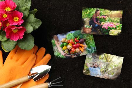 Mit den Gartentrends 2020 zaubert man sich ein Paradies aus dem eigenen Garten!