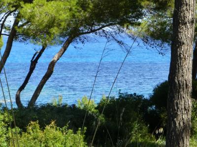 Mallorca - Ein Urlaub der anderen Art