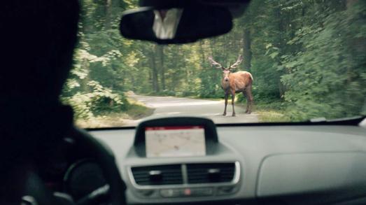 Aus dem Nichts: Wen es mal zum Unfall kommt, ist der persönliche Schutzengel Opel OnStar sofort zur Stelle