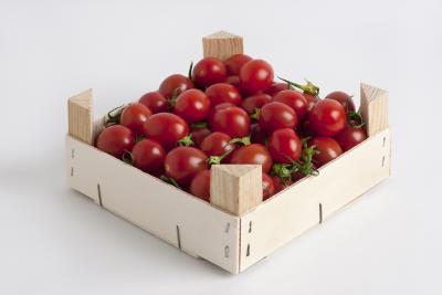 GROW Tomaten-Steige