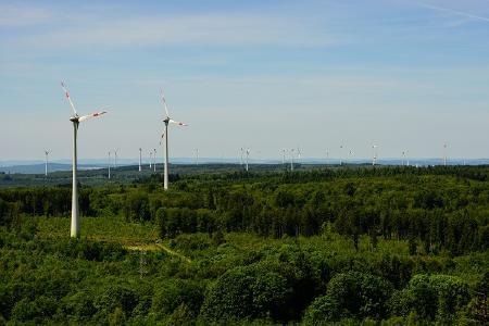 Foto: Naturschutzinitiative e.V. (NI)