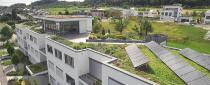 DRAINROOF Die Lösung gegen Zubetonierens des Gebiete und Dächer. Bepflanzte Dächer sind ist nicht nur schön, sondern auch gesund! Der begrünte Raum hilft uns, der Kontakt mit der Natur, die immer das Leben der Menschen charakterisiert hat, zu finden. Es ist der Ort, der uns erlaubt, der  angeborenen Bindung mit Pflanzen wieder zu erwecken.