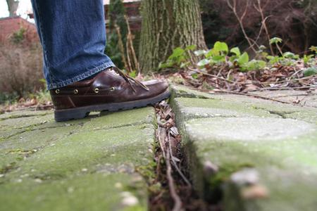 Das kann teuer werden: Die Baumwurzeln haben die Gehwegplatten angehoben und sind nun gefährliche Stolperfallen