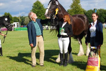 Das schönste Pferd Black Diamond Devil mit Besitzerin Astrid Schmitz, Dr. Ralf Ruhnau und Sponsoringpartnerin Antje Grafe von Marstall Pferdefutter