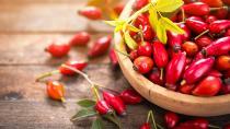 Superfood Hagebutte – gut gestärkt durch den Herbst