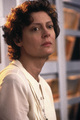 Susan Sarandon im TELE 5-Interview: