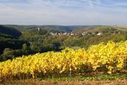 DO_Blick auf Burg Sponheim_Quelle Naheland-Touristik GmbH.JPG