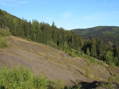 Besucher gefährden Schwermetallrasen bei Lautenthal im Forstamt Seesen