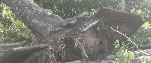 Sturmschaden: So zahlt die Versicherung den Schaden am Haus!