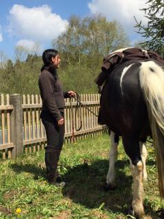 Das Huflädchen - Simone Schmidt unterwegs mit einem ihrer schönen Pferde auf Swiss Galoppers.