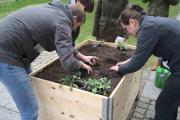 Die Ackerpause: Gemüse pflanzen und Teamgeist ernten / Bild: AckerCompany GmbH