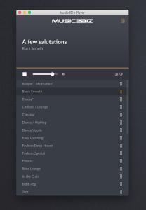 Smarter MUSIC2BIZ Software Player