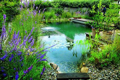 Badespaß im eigenen garten foto swimming teich com immowelt de