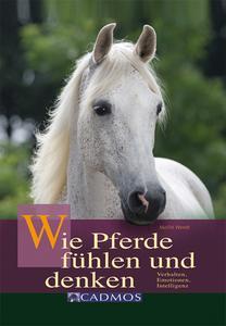 Wie Pferde fühlen