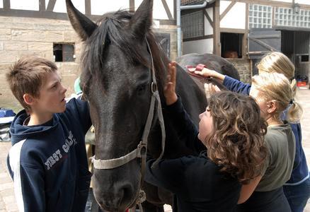 Nicht nur Erholung und Entspannung für das Pferd – auch die Kinder genießen Ihre Zeit mit den Pferden in vollen Zügen
