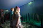 """ARCHAEORAMAMultimediashowPfahlbauten.jpg: Blick in die """"Erzählmaschine"""" ARCHAEORAMA, in der die Besucher des Freilichtmuseums in die Unterwasserarchäologie eingeführt werden. Einmaliger Abdruck frei, Copyright: Pfahlbaumuseum Unteruhldingen."""