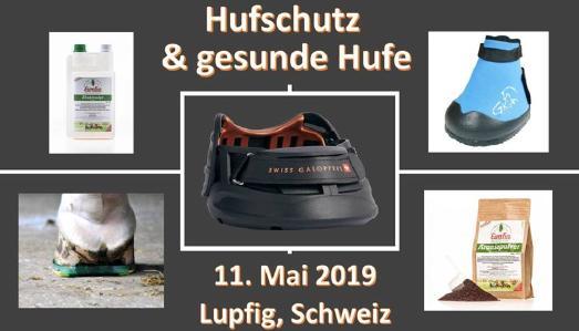 Swiss Galopper am 11.Mai 2019 in Lupfig.