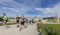 Marathon KA / Bildnachweis: Marathon Karlsruhe e.V.