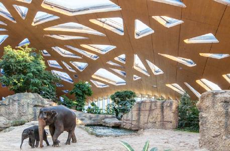 Pressefoto: Elefantenhaus Zoo Zürich, (c) Andreas Buschmann