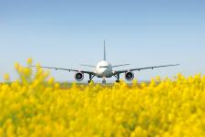 Summer Holidays in 2020: Flights Resumed to Many Popular Destinations