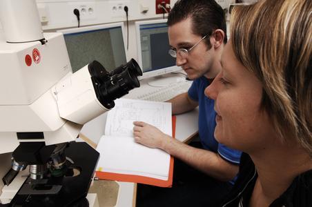 Ein breites Arbeitsspektrum in einer innovativen Branche erwartet Studierende der Kunststoff- und Werkstofftechnik an der FH Osnabrück.