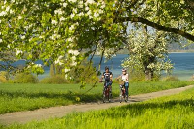 Radrouten zwischen Apfelbäumen und See: Herrliche Radwege führen ufernah durch Obstbaumwiesen / Bildnachweis: REGIO Konstanz-Bodensee-Hegau e.V.