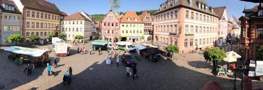 Grüner Markt im Herzen von Karlstadt Wollen auch Sie Ihre Produkte auf unserem Grünen Markt anbieten? / Foto: Susanne Keller
