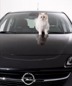 Motorhaube, Dach, Innenraum – Karl und Choupette Lagerfeld setzten jedes Detail des neuen Opel Corsa perfekt in Szene