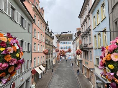 NEU in Konstanz: Blühende BlumenBälle in der Innenstadt