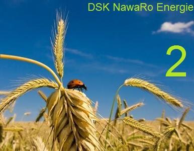 DSK NE2 Coverbild