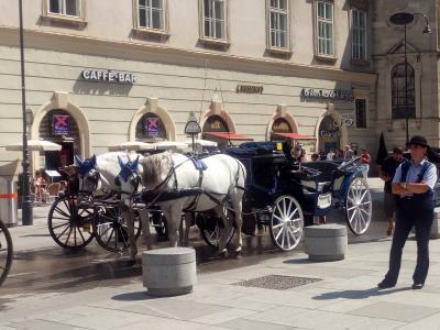 Wien: Fiaker raus aus der Innenstadt!