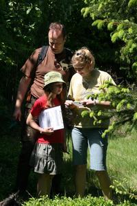 """-Die """"caches"""" befinden sich unmittelbar neben Wegen und Steigen, um die Vegetation im Schutzgebiet nicht negativ zu beeinflussen /  Foto: Nationalpark Kellerwald-Edersee"""