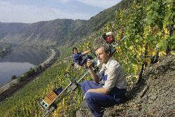 Jahrgang 2011: Ein Blick in die 13 deutschen Anbaugebiete