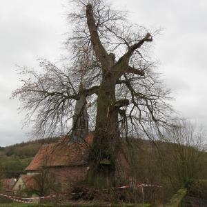 Naturdenkmal in Fraurombach droht auseinander zu brechen