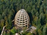 Im Herzen von Deutschlands erstem und ältestem Nationalpark verspricht der Baumwipfelpfad ein einzigartiges Naturerlebnis / © Erlebnis Akademie AG