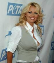 Appell an UEFA-Präsident Platini: Pamela Anderson (Foto: PETA)