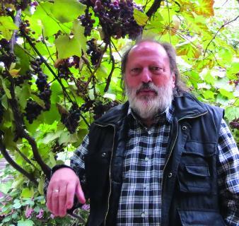 Rainer Kaufmann, BTMV