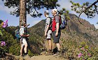 Aufstieg zum Bejenado, La Palma