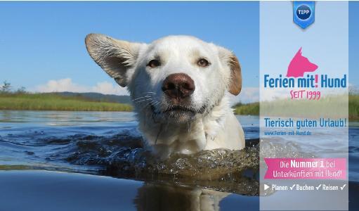 DU hat die Wahl unter mehr als 150.000 hundefreundliche Unterkünfte mit Hund in Europa. Ob Ferienhaus, Ferienwohnung oder Hotel! Dein Hund ist willkommen!
