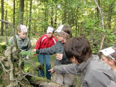 Kleine Wölfe erforschen ihren Lebensraum, Theateraufführung in der Kellerwaldschule Foto: Nationalparkamt Kellerwald-Edersee