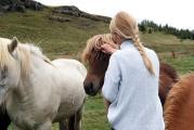 Bei einem Freiwilligenaufenthalt auf dem Pferdehof lassen sich Engagement und die Liebe zum Tier vereinen / © Unsplash