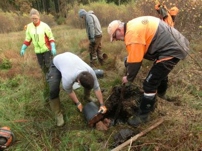 Forstwirtschaftsmeister Harmut Warnecke (re) vom Forstamt Dassel arbeitet mit fünf Forststudenten im Teichwiesen-Moor. Sie verschließen in mühsamer Handarbeit die Drainagerohre / Foto © Landesforsten
