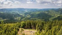 Aussicht vom Buchkopfturm, Oppenau-Maisach © Chris Keller/Schwarzwald Tourismus
