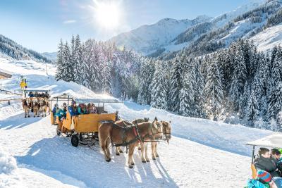 Kutschenfahrt im Ski Juwel