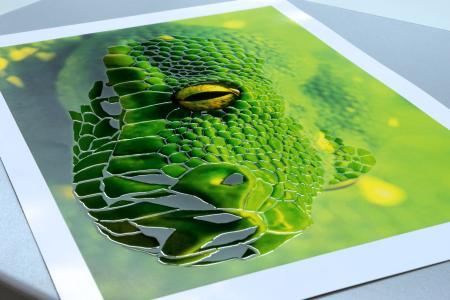 Beispiele der digitalen MGI-3D-Lackierung