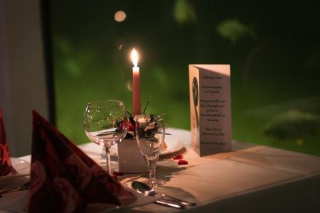 Wildpark MV, Candle Light Dinner / Foto: R. M. Weisner