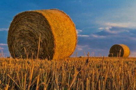 Regionale Landwirtschaft und Bio-Wertschöpfungsketten; Titelbild der Veranstaltung